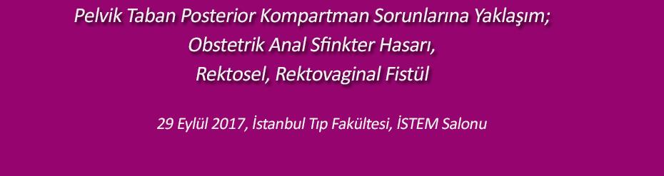 Pelvik Taban Posterior Kompartman Sorunlarına Yaklaşım;Obstetrik Anal Sfinkter Hasarı,Rektosel, Rektovaginal Fistül