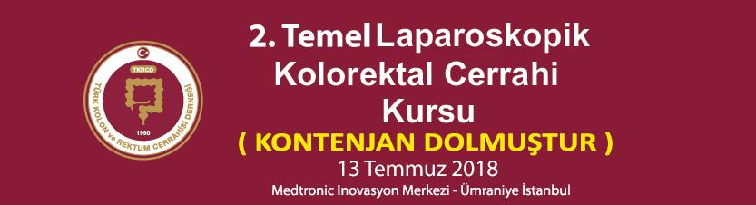 2. Temel Laparoskopik Kolorektal Cerrahi Kursu (Kontenjan Dolmuştur)