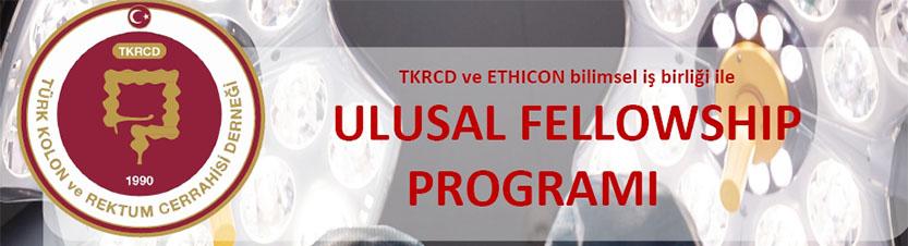 Ulusal Fellowship Programı