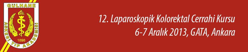 12. Laparoskopik Kolorektal Cerrahi Kursu
