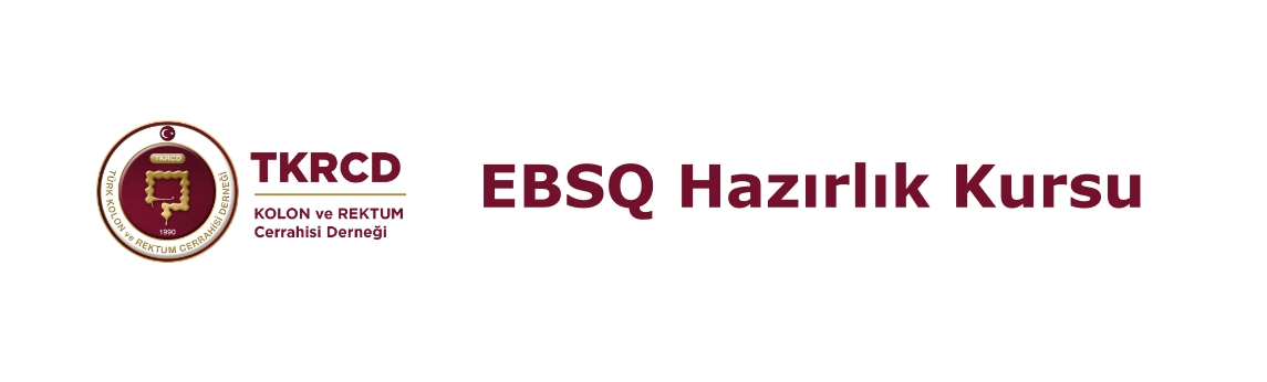 4. EBSQ Hazırlık Kursu